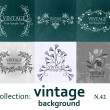 Collection vintage background — Stockvectorbeeld
