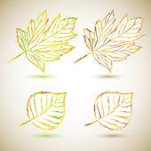Conjunto folhas de outono — Vetorial Stock