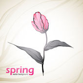 Spring flowers background — Vector de stock