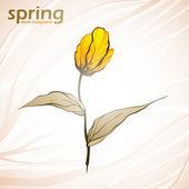 φόντο λουλούδια άνοιξη — Διανυσματικό Αρχείο