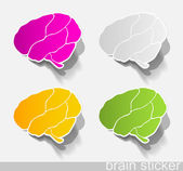 Human brain, realistic design elements — Stock Vector