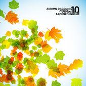 秋の葉の背景 — ストックベクタ