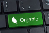 Green computer keyboard button with the word organic and leaf ic — Stock Photo