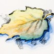 Lonely autumn leaf, watercolor with slate-pencil painting — Stock Photo
