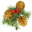 Golden Christmas cones with fir branch and red berries, isolated — Stock Photo #12857990