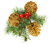 Golden Christmas cones with fir branch and red berries, isolated — Stock Photo