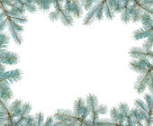 Frame made with blue spruce twigs isolated on white, copyspaced — Stock Photo
