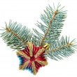 Christmas decoration star on fir branch, isolated on white — Stock Photo