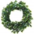 Christmas wreath, isolated on white — Stock Photo #13476958