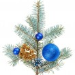 Blue christmas decoration balls on spruce branch, isolated on wh — Stock Photo