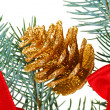 Christmas golden cone and red bows on pine branch, isolated on — Stock Photo