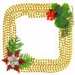 Christmas beads garland decoration frame with spruce branch — Stock Photo