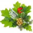 Stock Photo: Christmas composition with ilex, fir and berries, isolated on wh