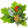 Christmas composition with ilex, fir and berries, isolated on wh - Stock Photo