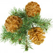 Stock Photo: Golden Christmas cones with fir branch, isolated on white