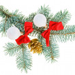 Christmas balls, red bows and cone on fir branch, isolated on wh — Stock Photo