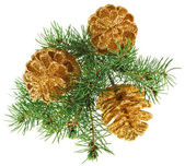 Golden Christmas cones with fir branch, isolated on white — Stock Photo