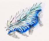 Single fluffy feather, watercolor with slate-pencil painting — Stock Photo