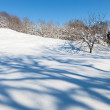Deserted winter hilly field landscape with beautiful shadows — Stock Photo