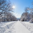 Winter road landscape with snow covered trees and bright sun, wi - Stock Photo