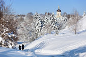 Paisagem de inverno linda com neve coberta abetos e igreja velha — Fotografia Stock