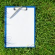 Blue medical clipboard with a pen over lush green grass — Stock Photo #19497209