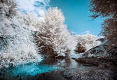 Mountain river bank with trees, Infrared (IR) landscape — Stock Photo