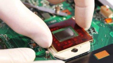 Installeren en verwijderen van de processor (cpu van de computer) — Stockvideo
