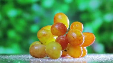 Muscat grapes cluster rotating on green outdoor background — Stock Video