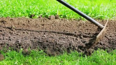 Cultivating flower bed with a rake on green grass lawn — ストックビデオ