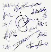 Signature Vector Autograph Name — Stock Vector