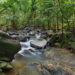 Waterfall in tropical forest. Mountain river, stones with moss a — Stock Photo #12766466