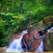 Stock Photo: Waterfall landscape in tropical forest. Jungle background with g
