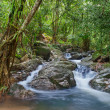 Waterfall in tropical forest. Mountain river, stones with moss a — Stock Photo #12766831