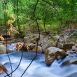 Waterfall in tropical forest. Mountain river, stones with moss a — Stock Photo #12766841