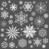 Sněhové vločky vánoční vektorové ikony. sněhová vločka sbírka grafiky — Stock vektor