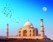 Taj Mahal Palace in India. Indian Temple Tajmahal — Stock Photo