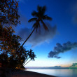 Sea beach sunset photography, palm trees and clouds — Stock Photo
