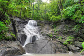 Waterfall in tropical rain forest jungle. Thailand beautiful nat — Stock Photo