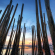 Low tide and bamboo sticks at sunrise — Stock Photo #32279313