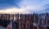 Sunset photography — Stock Photo