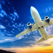 Airplane transportation. Jet air plane flies in blue sky — Foto de Stock
