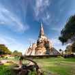 Ancient temple in AyutthayThailand, wat phrsi saphet — Stock Photo #37212679