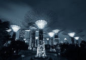 Gardens by the Bay or SuperTree Grove in Singapore — Stock Photo