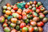 Rajčata z trhu zeleniny. — Stock fotografie