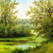 Beautiful summer landscape, canvas, oil — Stock Photo