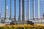 Ventanas de los rascacielos de la ciudad — Foto de Stock