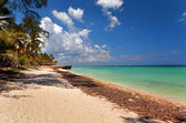 Beautiful view of the Atlantic Ocean, Varadero, Cuba — Stock Photo