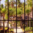 View of tropical garden through panoramic window — Stock Photo #29749263