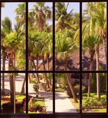 View of a tropical garden through a panoramic window — Stock Photo